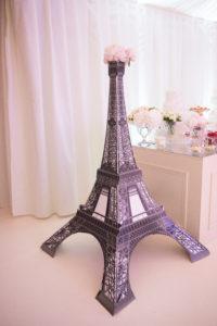 Роскошный свадебный фейерверк во Франции (5)
