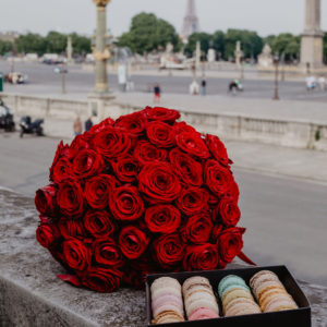 proposal in paris